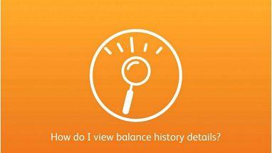 View Balance History | SunTrust Resource Center